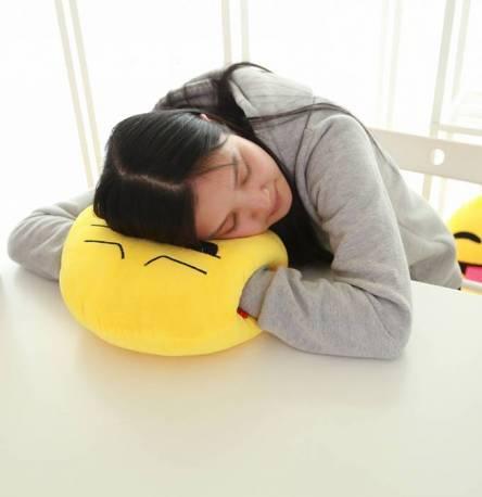 Фото  товара подушка-одеялко детское кот-пес