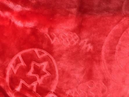 Фото  товара Детские пледики Микрофибра однотонные 01
